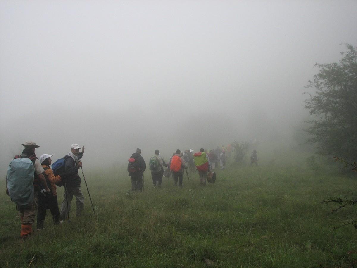 تور جنگل ابر تابستان ۹۹