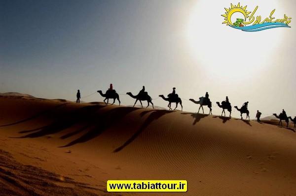 شترسواری یکی از جاذبه های کویر مصر