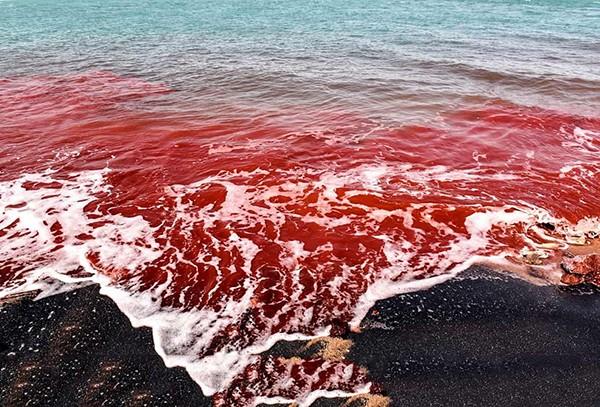 جزیره هرمز کجاست   آشنایی با جزیره هرمز قشم با خاکهای سرخ رنگارنگ +عکس